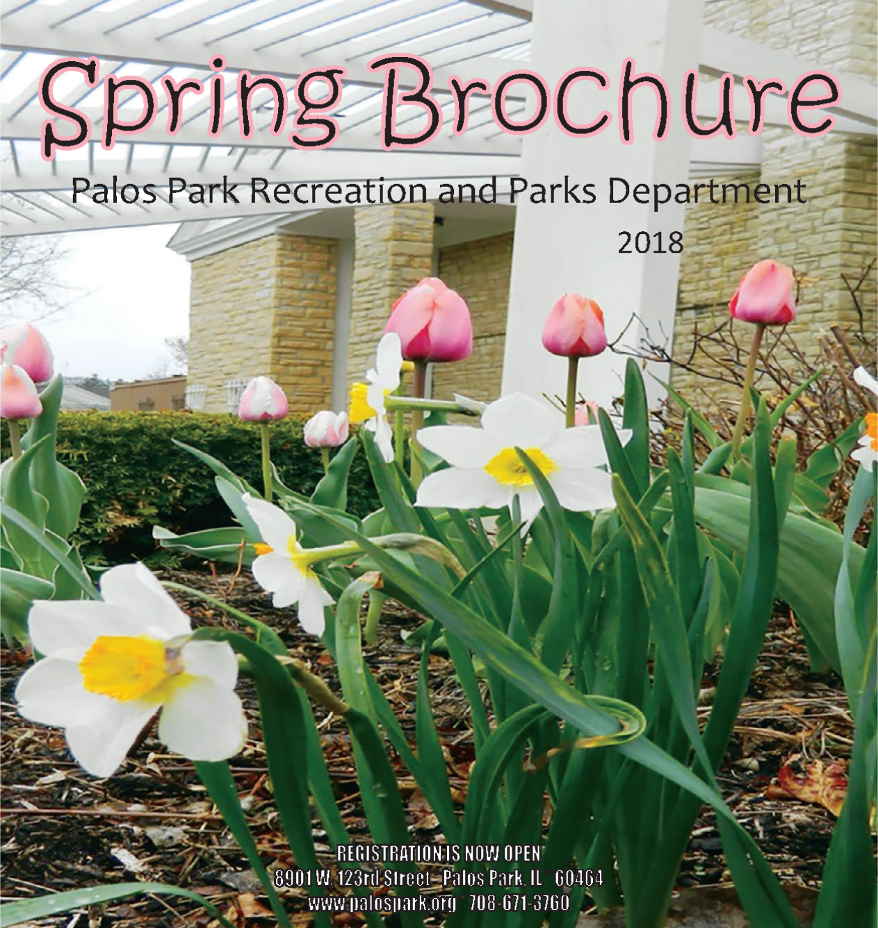 2018 Spring Brochure Cover